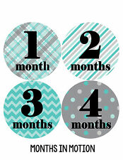 Baby Boy Monthly Milestone Birthday Stickers 12 Month Sticker Photo Prop #086