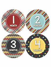 Baby Boy Monthly Milestone Birthday Stickers 12 Month Sticker Photo Prop #415