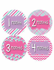 Baby Girl Monthly Baby Stickers Style #409