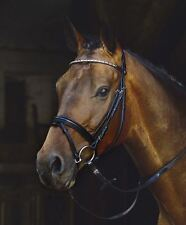 Schockemohle Coventry Crystal Leather Snaffle Bridle  - Without Reins