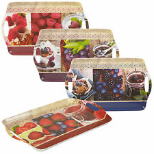 Melamine Serving Trays Fruit Dinner Tea Coffee Sandwich Lunch Snack Food Handles