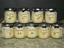 NEW BlueBird Candle Company ~ Natural Soy Wax ~ Crackling Wood Wick ~ You Pick