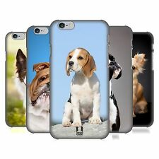 HEAD CASE DESIGNS POPULAR DOG BREEDS HARD BACK CASE FOR APPLE iPHONE PHONES
