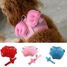 Small Pet Harness Leash Mesh Strap Dog Cat Adjustable Angel Wings Vest Puppy