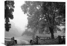 Misty II by Stephen Rutherford-Bate Photographic Print on Wrapped Canvas