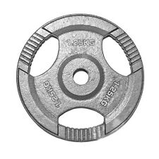 "1"" TRI-GRIP Cast Iron Disc Weight Plates Curl Barbell Weights Fitness Gym 1.25KG"