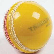 CRICKET SPORTS OUTDOOR PLAYING TRAINING & PRACTICE INCREDIBALL TRAINER BALL