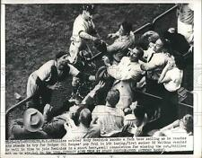 1950 Press Photo Andy Seminick  and Ed Waitkus of Phillies Sails in Fence