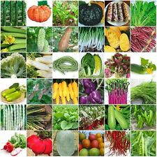 33 Styles Delicious Heirloom Garden vegetable seed Organic seeds organic plant