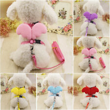 Trendy Cute Pet Dog Cat Leashes Collars Set Puppy Leads Angel Wing Harness