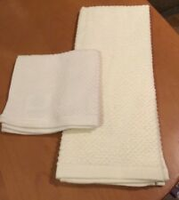 The Big One (2) Piece Kitchen Weave Towel & Dishcloth Set