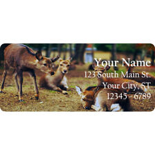 Deer Doe Personalized Return Address Labels Baby Deer in the Country 60 Labels