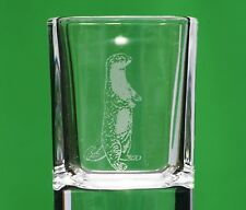 Otter Countryside Nature Crystal Shot Tot Glass Cup Ideal Gift British Animal