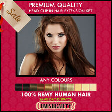 Clip in Remy Quality 100% Human Hair Extensions Straight Full Head