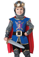 Kids Medieval Knight Toddler Renaissance Halloween Costume