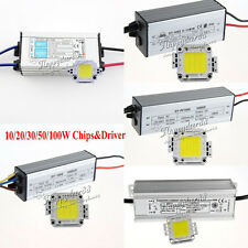 10W/20W/30W/50W/100W IP65 Power LED Driver Supply White LED Chip Lamp Beads