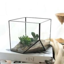 Cube Glass Terrarium Garden Flower Vase Greenhouse Air Plant Container Size S/L