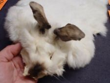RABBIT SKIN TANNED FUR FULL BODY WITH FACE EARS & TAIL CHOOSE COLOR/SIZE