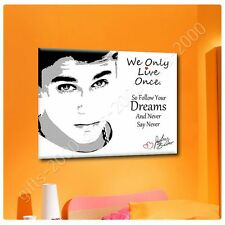 Synthetic CANVAS +GIFT Justin Bieber Never Say Never Alonline Designs Paints