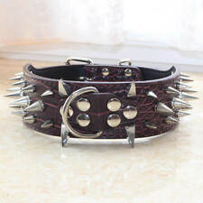 "Spiked Studded Dog Collar 2"" Wide Leather Dog Collar for Pitbull Terrier Bully"
