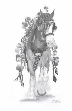 SHIRE Draft HORSE Ltd Edition art drawing prints 2 sizes A4/A3 & Card available