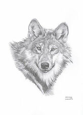 WOLF Limited Edition art drawing prints 2 sizes A4/A3 &  Card Available