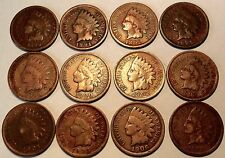 Lot of 12 Indian Head Pennies - all diff range from 1890 - 1907