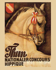 Thun Horse Dressage Competition Equestrian Sport 16X20 Vintage Poster FREE S/H