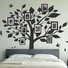 Family Tree Bird Wall Decals Photo Frames Art Wall Stickers Home decor