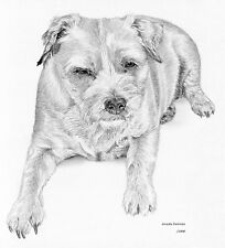 BORDER TERRIER (3) dog LE art drawing prints 2 sizes A4/A3 & Card available