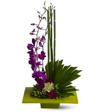 Teleflora Zen Artistry orchids flowers - Fresh Flower Delivery by Florist