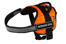 DT Works Orange Working Dog Harness with Velcro Patches WORKING DOG