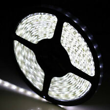 12V 5M 300 Leds SMD 3528/5050/5630 Cool White LED Strip Light for DJ Club/Garden