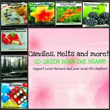 soy wax clamshell break away tart melts homemade soy candles