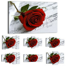 Canvas Print Framed Picture 47 Shapes Wall Art flowers red rose music 1312 UA