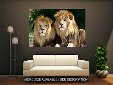 Wall Art Canvas Print Picture Wild Animals Lions-Unframed