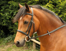 Windsor Equestrian Leather Bridle with Plain Cavesson Noseband