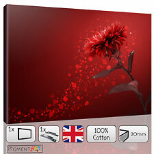LARGE RED ABSTRACT FLOWERS FLORAL PETALS CANVAS WALL ART FRAMED PRINTS PICTURES