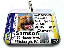 Pennsylvania driver license vanity dog driver cat pet driver id tag PHOTO ID