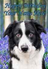 Border Collie PIDBOR1  All Occasions Personalised Greeting Card Birthday Mum Dad