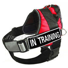Service Dog Harness Vest Removable Chest Plate with label Patches IN TRAINING