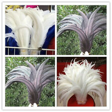 Wholesale! 10-200 pcs White / black rooster tail feathers 10-16inches / 25-40cm
