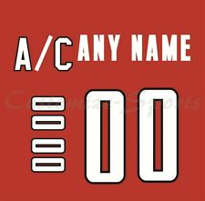 IIHF Hockey 2002 Team Canada Red Jersey Customized Number Kit un-sewn