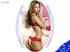 Babydoll Lingerie Fridge Magnet Pin Up Hot Sexy Girl Tool Box Mini Bikini 81-100