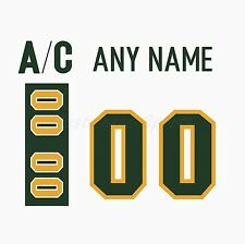 Finland Ilves Tampere White Jersey Customized Number Kit un-sewn