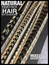 Natural Feather Hair Extensions 5 XL Grizzly Feathers 1FREE LONG Beads Tool Kit