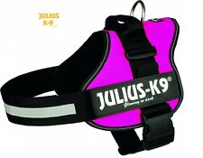 Julius K9 Dog Harness in Dark Pink - Genuine Strong Power Harness