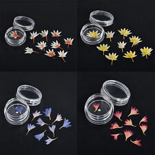 Mixed Dried Flowers Nail Art DIY Bottle Preserved Dry Flower Manicure Decoration