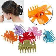 10pcs Hair Clamps Comb Claw Clip Plastic Clear Multi Color Fashion Lady Women