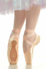 NWT Gaynor Minden Pointe Shoes Size Run 9